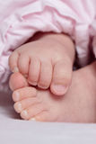 Newborn baby feet pink. Little cute feet of a newborn baby with pink background royalty free stock images