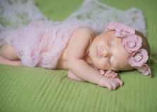 Newborn baby with flower wreath sleeping on a Royalty Free Stock Photo