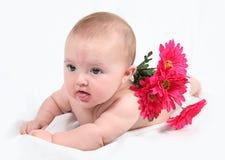 Newborn baby with flowers Stock Photos