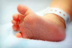 Newborn baby foot Stock Images