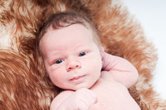 Newborn baby on fur Royalty Free Stock Photography