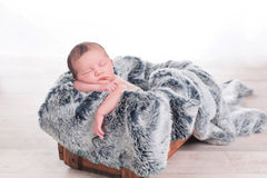Newborn baby on a fur blanket Royalty Free Stock Images