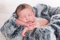 Newborn baby on a fur blanket Stock Image