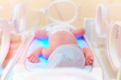 Newborn baby get the light therapy in infant incubator Stock Photos