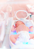 Newborn baby get the light therapy in infant incubator royalty free stock image