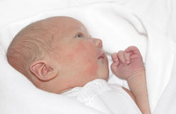 Newborn baby girl. A newborn baby girl resting on a white blanket stock image