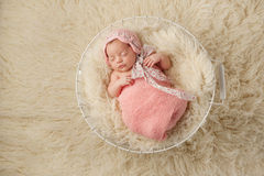 Newborn Baby Girl in Basket Wearing a Pink Bonnet. A portrait of a five week old newborn baby girl wearing a pink bonnet and sleeping in a wire basket. Shot from Royalty Free Stock Photo