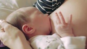 Newborn baby girl during breastfeeding stock footage