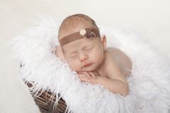 newborn baby sleeps in a brown basket on a white plaid stock image