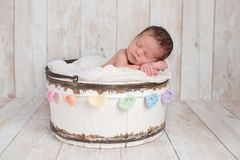 Newborn Baby Girl in a Bucket with Rainbow Heart Garland Stock Images