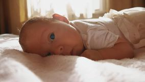 Newborn baby girl trying to crawl. Newborn baby girl close up portrait Royalty Free Stock Images