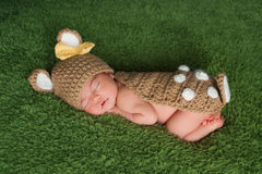Newborn Baby Girl in Fawn / Deer Costume Royalty Free Stock Images