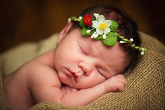 Newborn baby girl has sweet dreams in strawberries Stock Photography