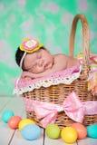 Newborn baby girl  has sweet dreams on the wicker basket. Stock Image