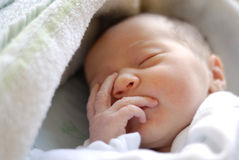 Newborn baby girl in hostpital bed sleeping Royalty Free Stock Images