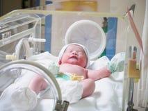 Newborn baby girl inside incubator in hospital stock photo