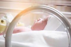 Newborn baby girl inside incubator in hospital royalty free stock image