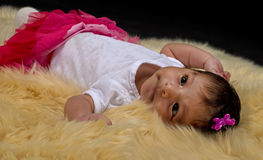 Newborn Baby girl laying on a soft blanket. A beautiful Hispanic newborn baby girl at 9 weeks old, turns her head as she lays on a deep white fur against a black Royalty Free Stock Photos