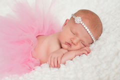 Newborn Baby Girl in Pink Tutu Stock Photo