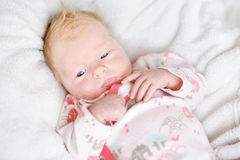 Newborn baby girl portrait Royalty Free Stock Photography