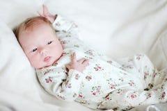 Newborn baby girl portrait Stock Images