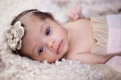 Newborn baby girl portrait Stock Photo
