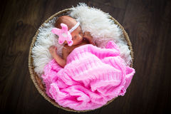 Newborn baby girl portrait Stock Photography