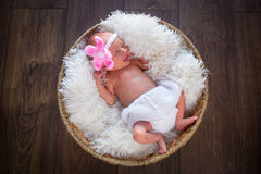 Newborn baby girl portrait Stock Images