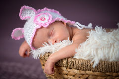 Newborn baby girl portrait Royalty Free Stock Photo