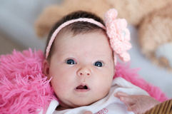 Newborn baby girl portrait lying in pink blanket, cute portrait. Card composition Royalty Free Stock Images