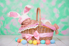 Newborn baby girl in a rabbit costume has sweet dreams on the wicker basket. Easter Holiday Stock Image