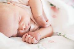 Newborn baby sleep first days of life at home. Newborn baby girl sleep first days of life. Cute little newborn child sleeping peacefully Stock Photography