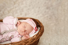 Newborn baby girl sleeping in basket. Newborn baby girl sleeping in basket Stock Photos