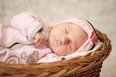 Newborn baby girl sleeping in basket. Royalty Free Stock Images