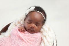 Newborn Baby Girl Sleeping in Bowl stock photo
