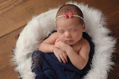 Newborn Baby Girl Sleeping in Fur Lined Bucket Stock Images