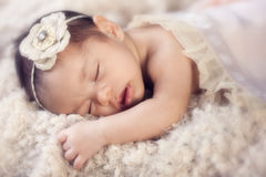 Newborn baby girl sleeping potrait Stock Photos