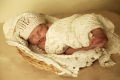 Newborn baby girl sleeping under cozy blanket in basket Royalty Free Stock Images