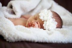 Newborn baby girl Royalty Free Stock Photo