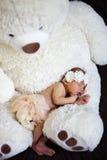 Newborn baby girl Royalty Free Stock Image