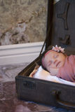 Newborn baby girl in suitcase Royalty Free Stock Photography