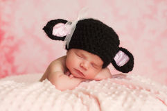 Newborn Baby Girl Wearing a Black Sheep Hat. 2 week old newborn girl wearing a black crocheted black sheep hat sleeping on a pink blanket with a pink background royalty free stock photo