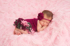 Newborn Baby Girl Wearing a Crocheted Romper Stock Photography