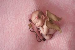 Newborn Baby Girl Wearing Cupid Wings. Portrait of 10 day old newborn baby girl. She is wearing a Cupid costume with angel wings, bow and arrow and is sleeping stock photography