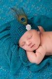 Newborn Baby Girl Wearing a Fancy Teal Hat Stock Photo