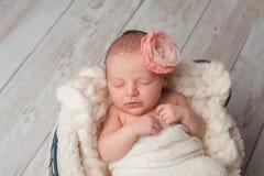 Newborn Baby Girl Wearing a Flower Headband Stock Images