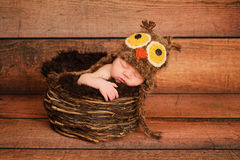 Newborn Baby Girl Wearing a an Owl Hat. 1 week old newborn girl wearing a brown owl hat and sleeping in a nest royalty free stock image