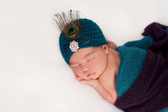 Newborn Baby Girl Wearing a Peacock Costume Stock Image