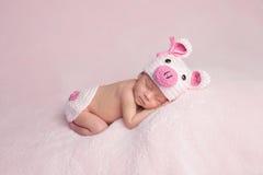 Newborn Baby Girl Wearing Piglet Costume Stock Image