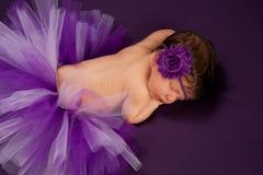 Newborn Baby Girl Wearing a Purple Tutu Royalty Free Stock Image
